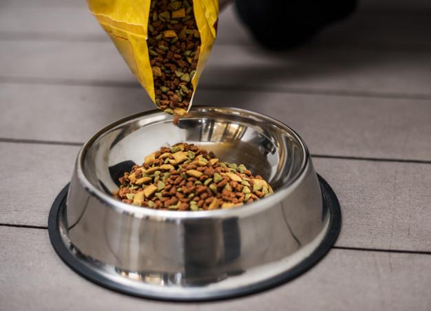 Kakovostna in ugodna hrana za pse