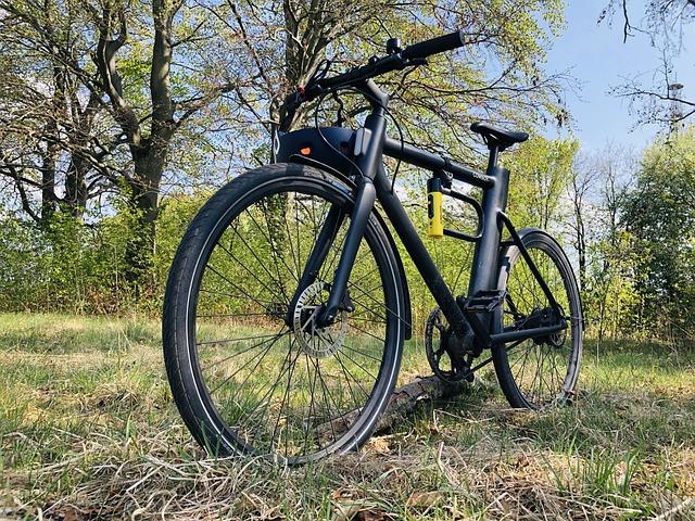 Električno kolo na dopustu
